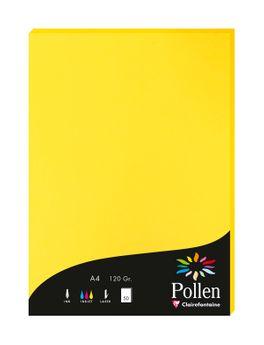 1 étui de 50 feuilles Pollen 210x297 mm 120g  - Jaune soleil